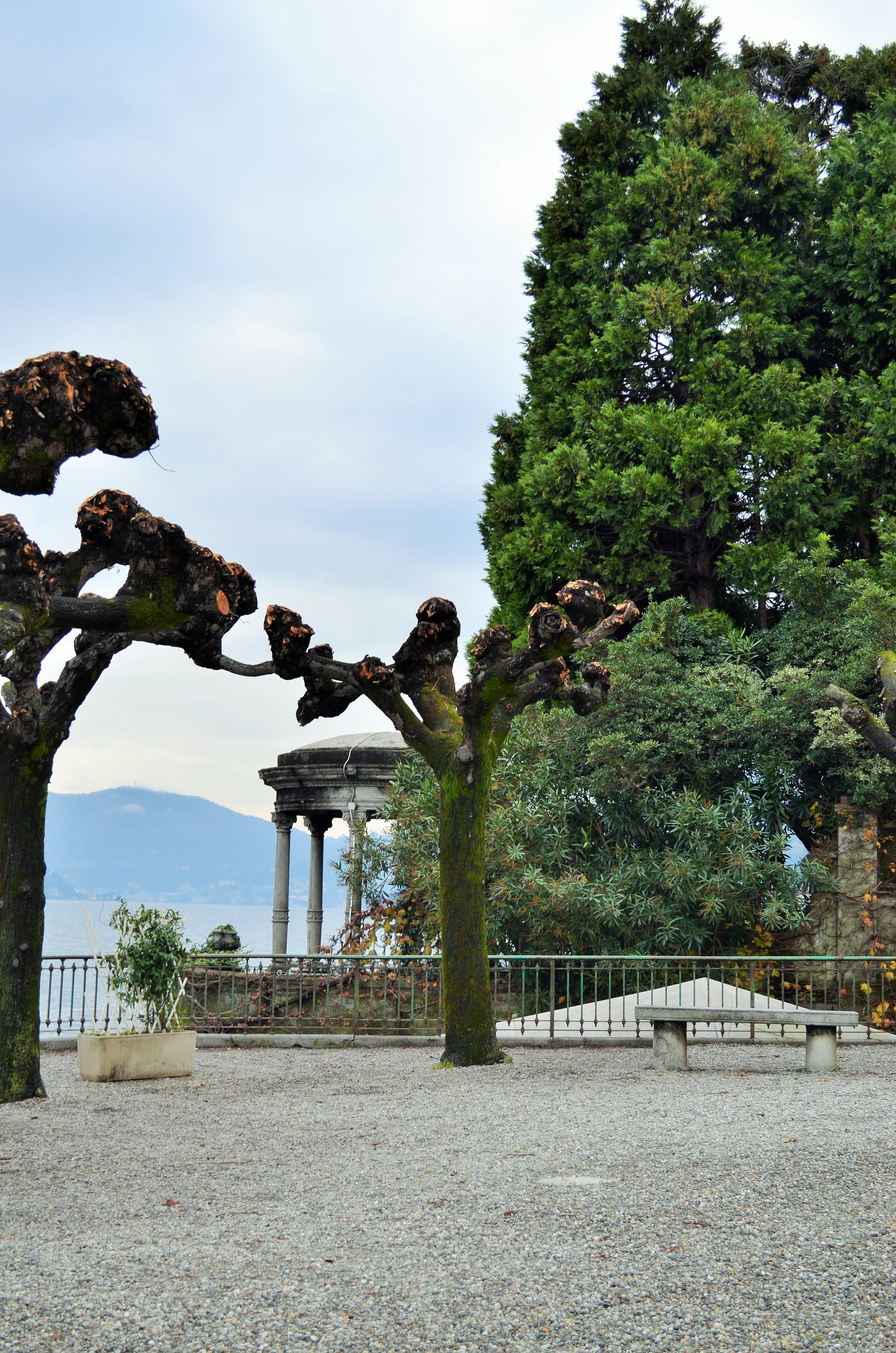 dsc_0526 Food Blogger Day a Moltrasio sul Lago di Como