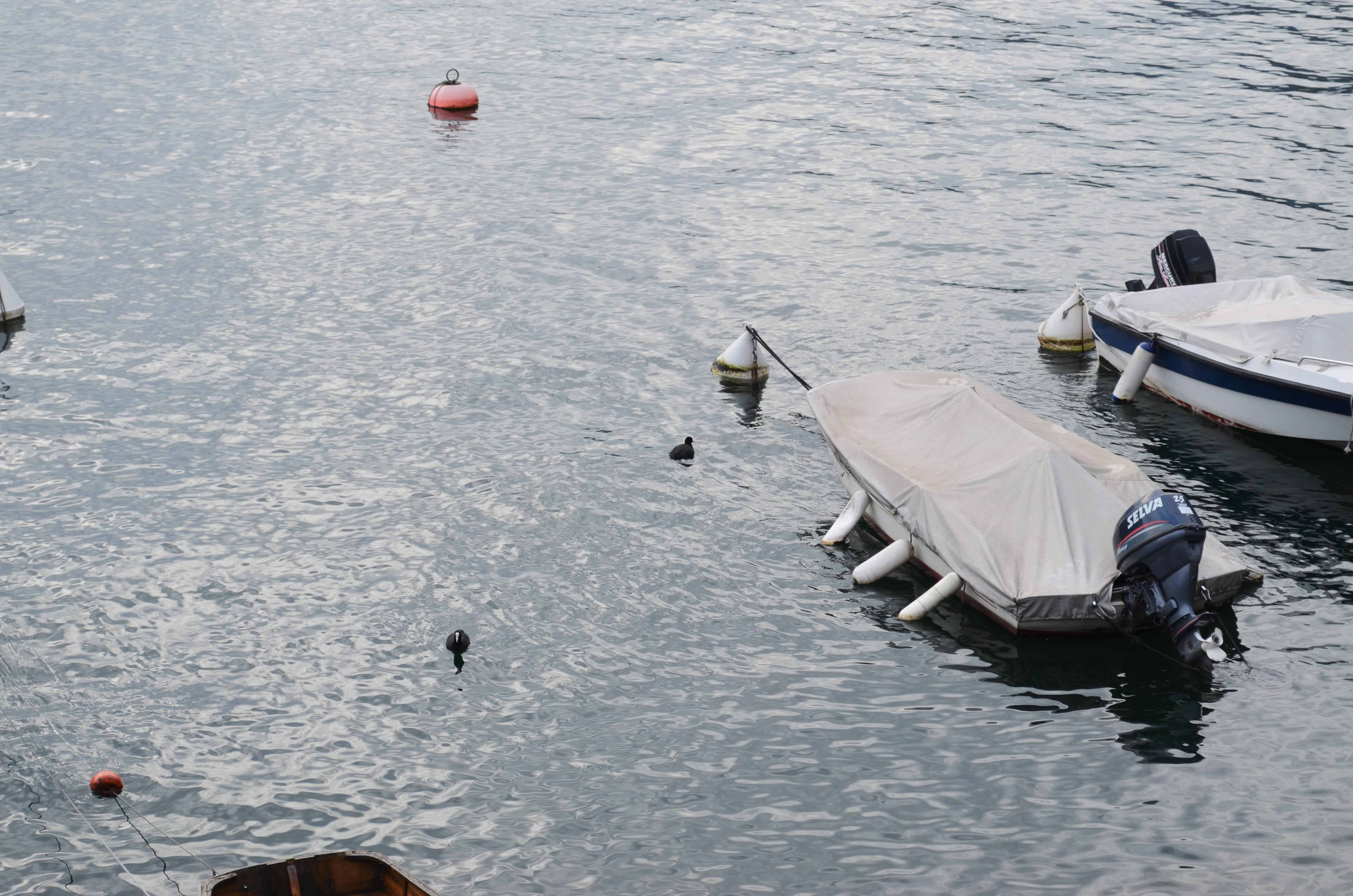 dsc_0542 Food Blogger Day a Moltrasio sul Lago di Como