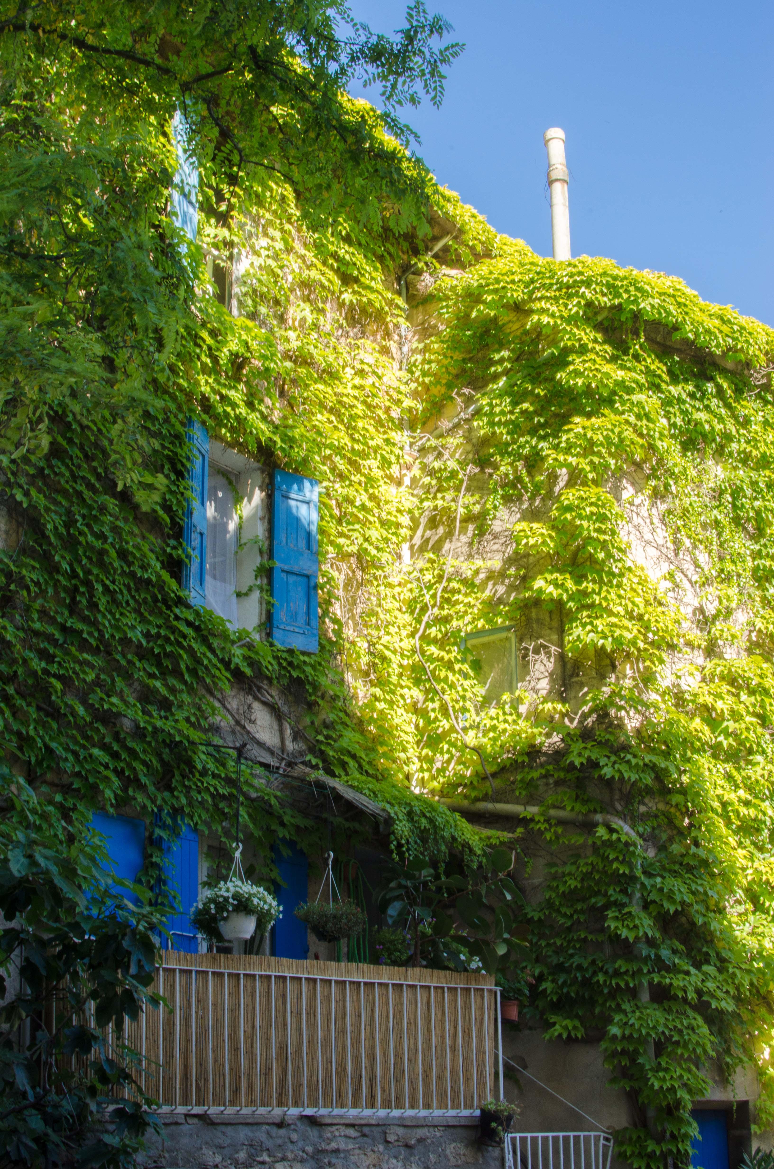 provenza21 Vacanze in Provenza, Camargue e Costa Azzurra