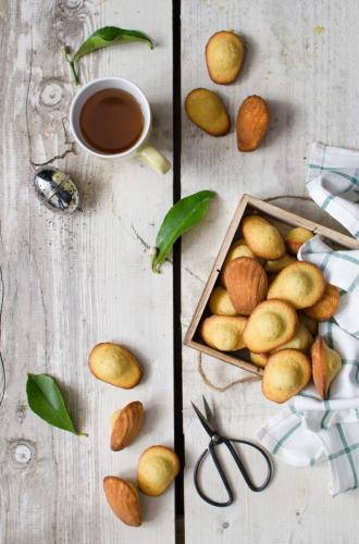 madeleines_limone1 My food photography