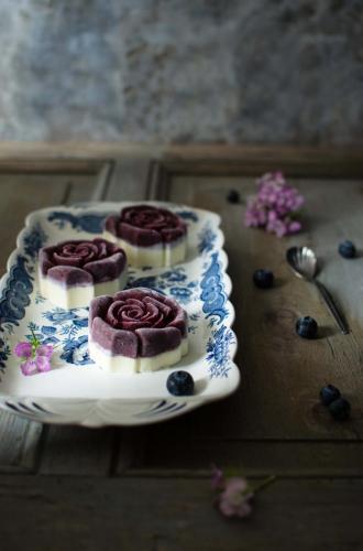 sorbetto_mirtilli_ganache2 My food photography
