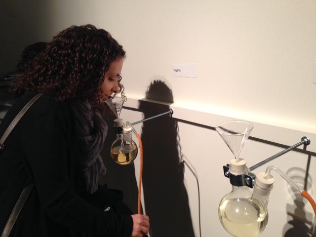 foto-23 Gola, arte e scienza del gusto - Triennale di Milano dal 31 Gennaio al 12 Marzo 2014