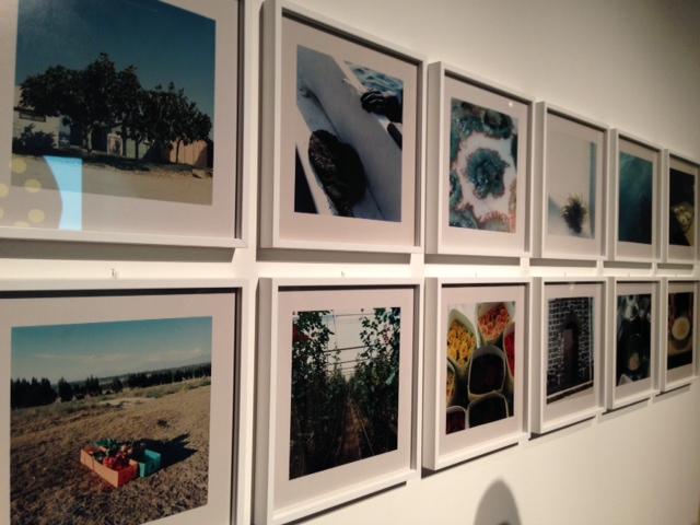 foto-29 Gola, arte e scienza del gusto - Triennale di Milano dal 31 Gennaio al 12 Marzo 2014