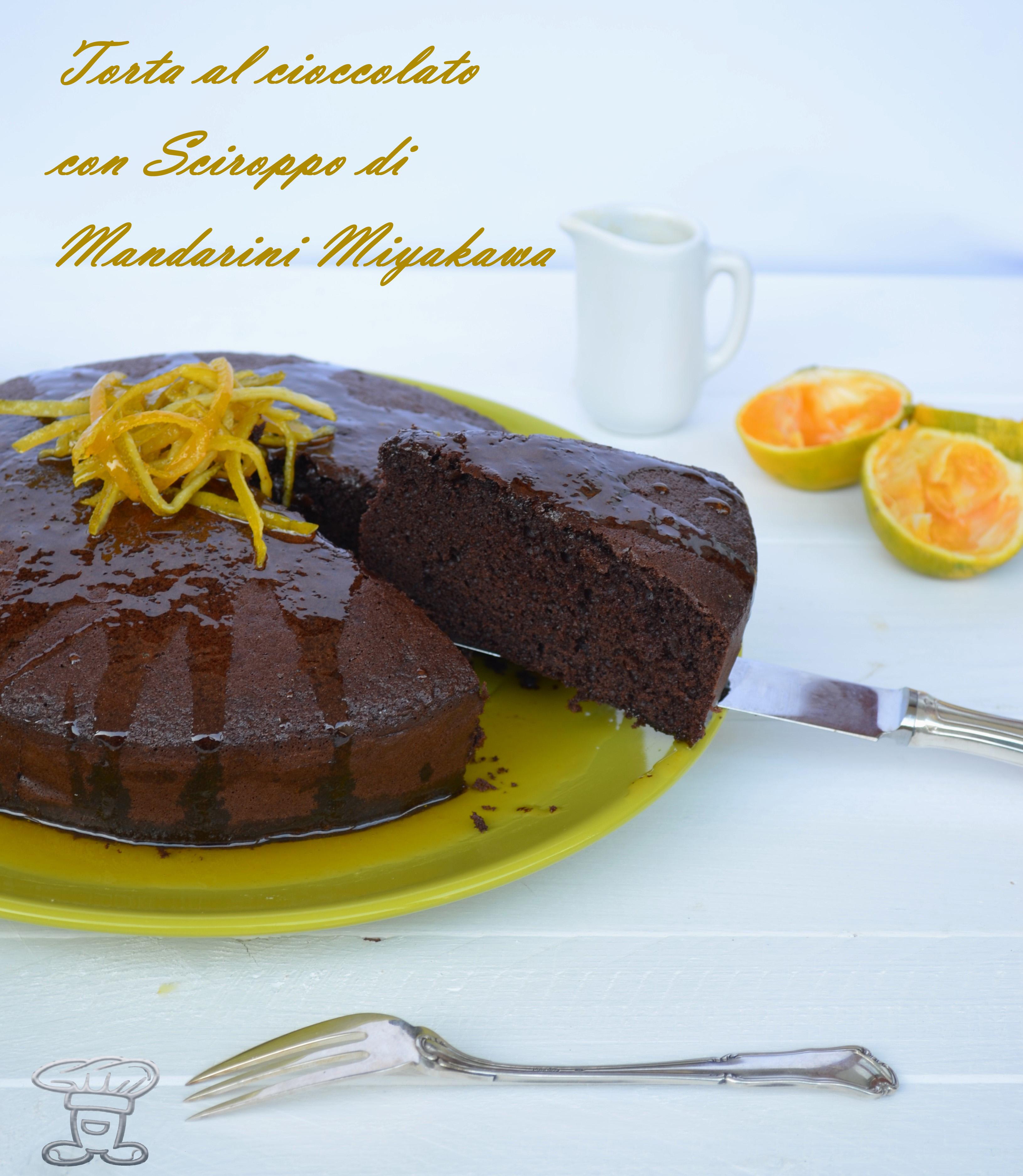 dsc_0165 Torta al Cioccolato con Sciroppo di Mandarino Miyakawa