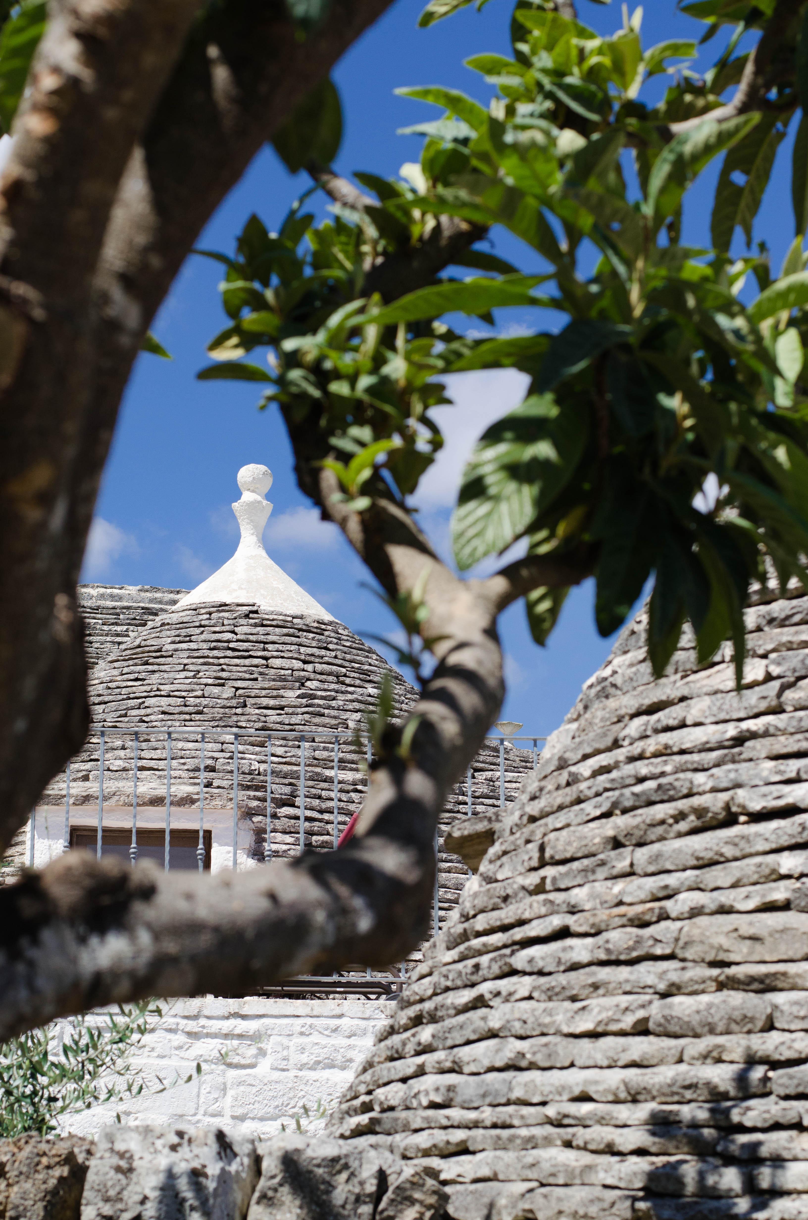 alberobello_trulli2 Puglia ed Alberobello - parte 1-