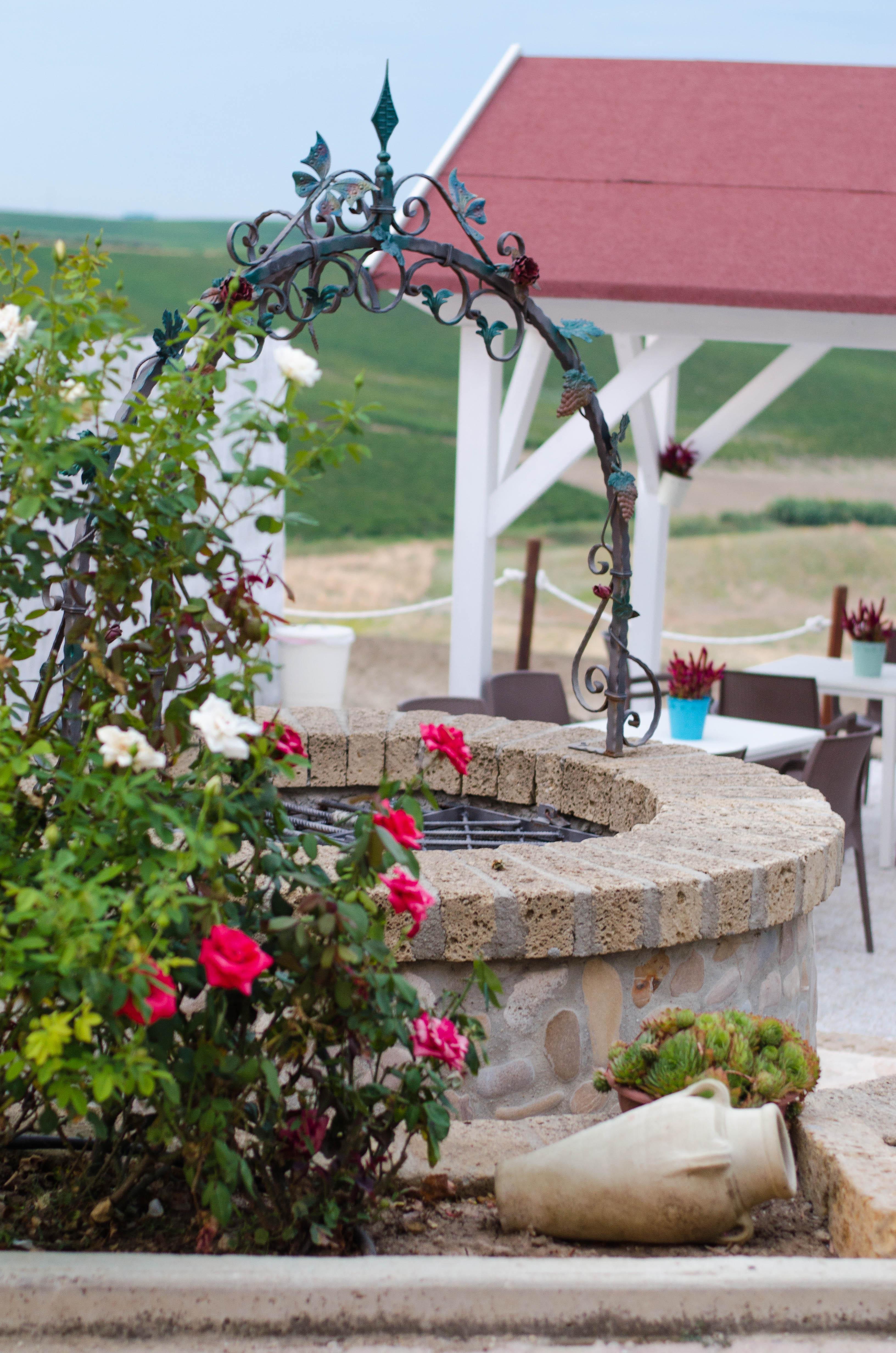 pozzo Puglia ed Alberobello - parte 1-