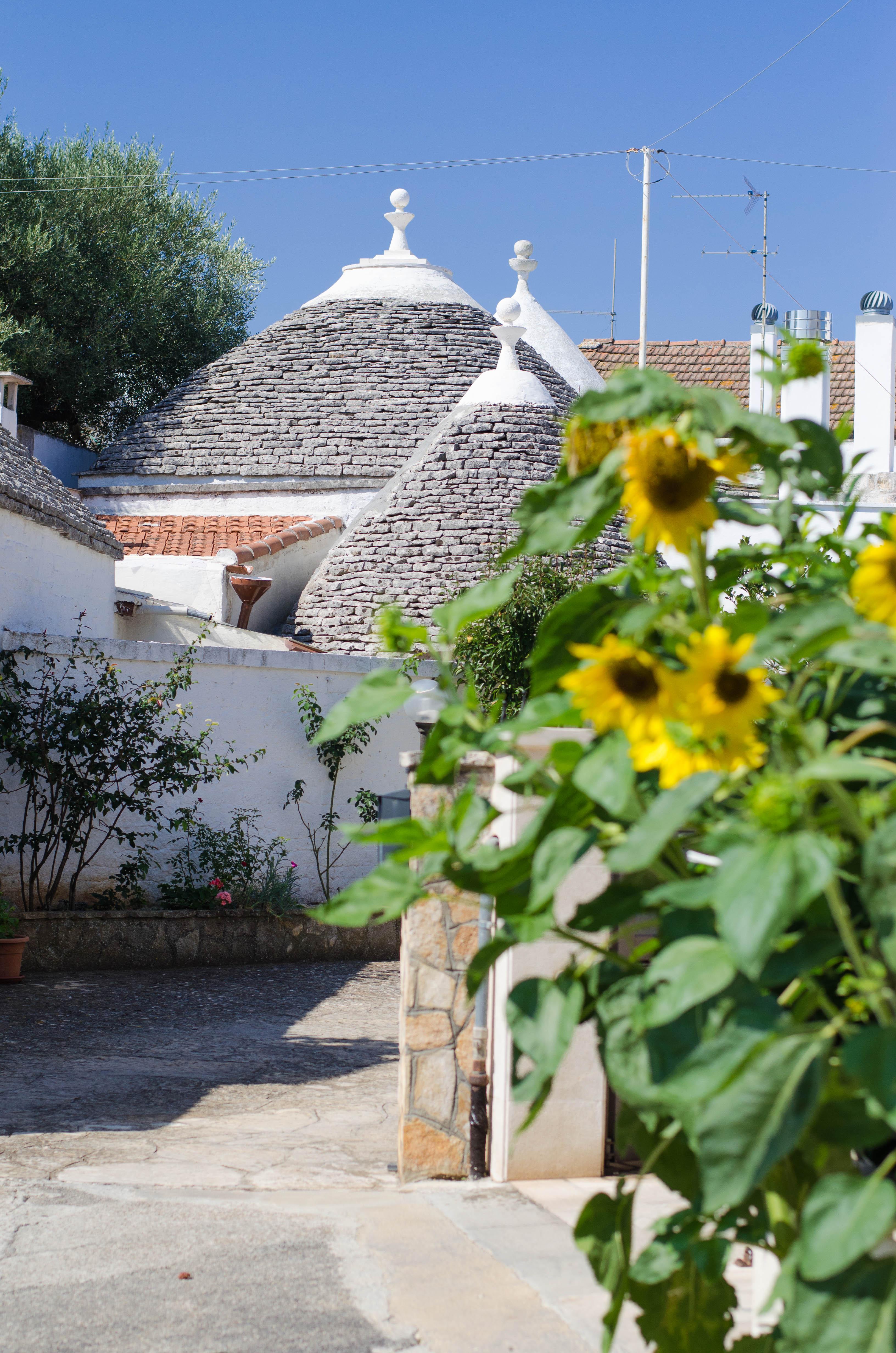 trulli_core1 Puglia ed Alberobello - parte 1-