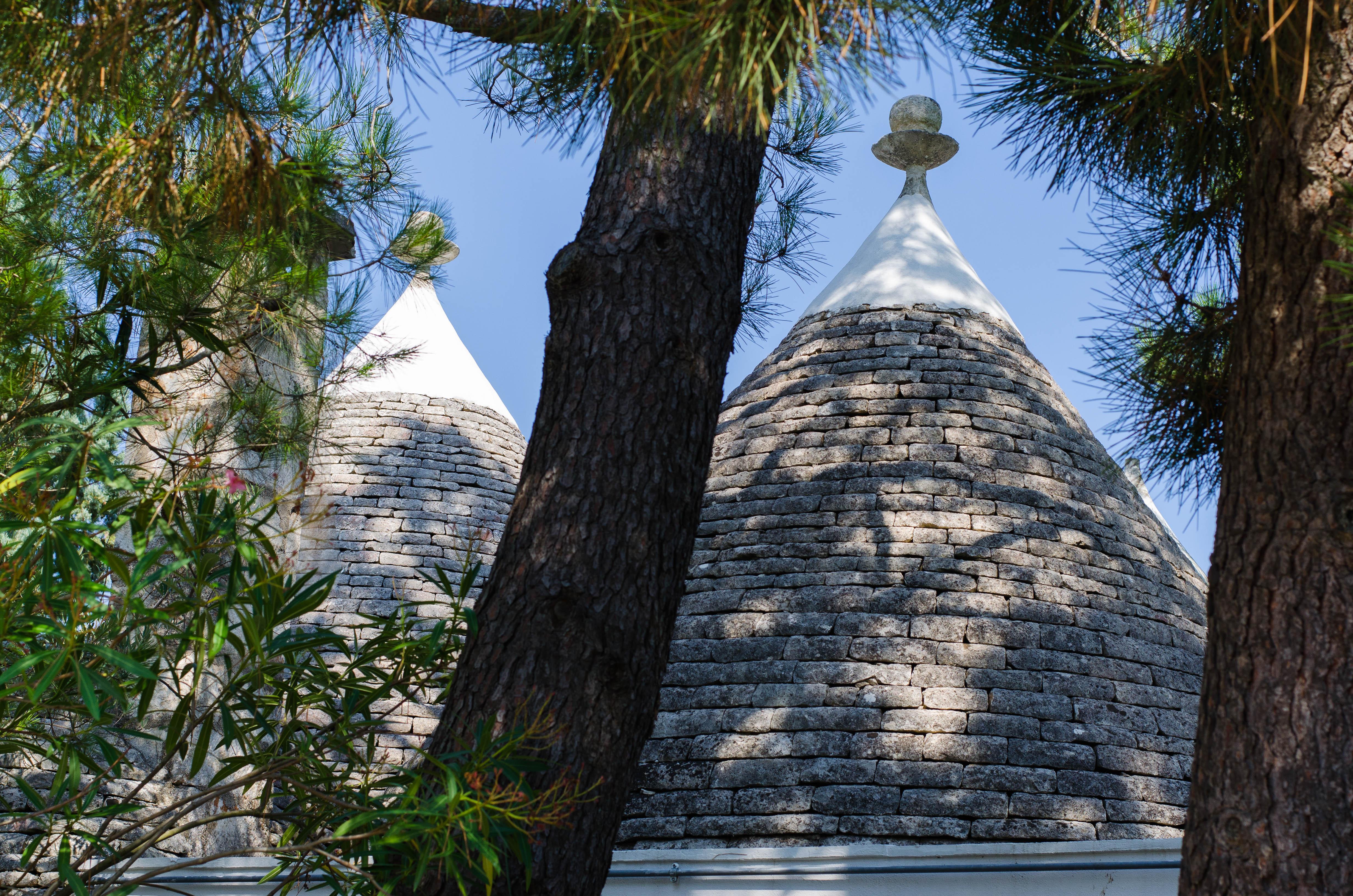 trullo_coreggia Puglia ed Alberobello - parte 1-