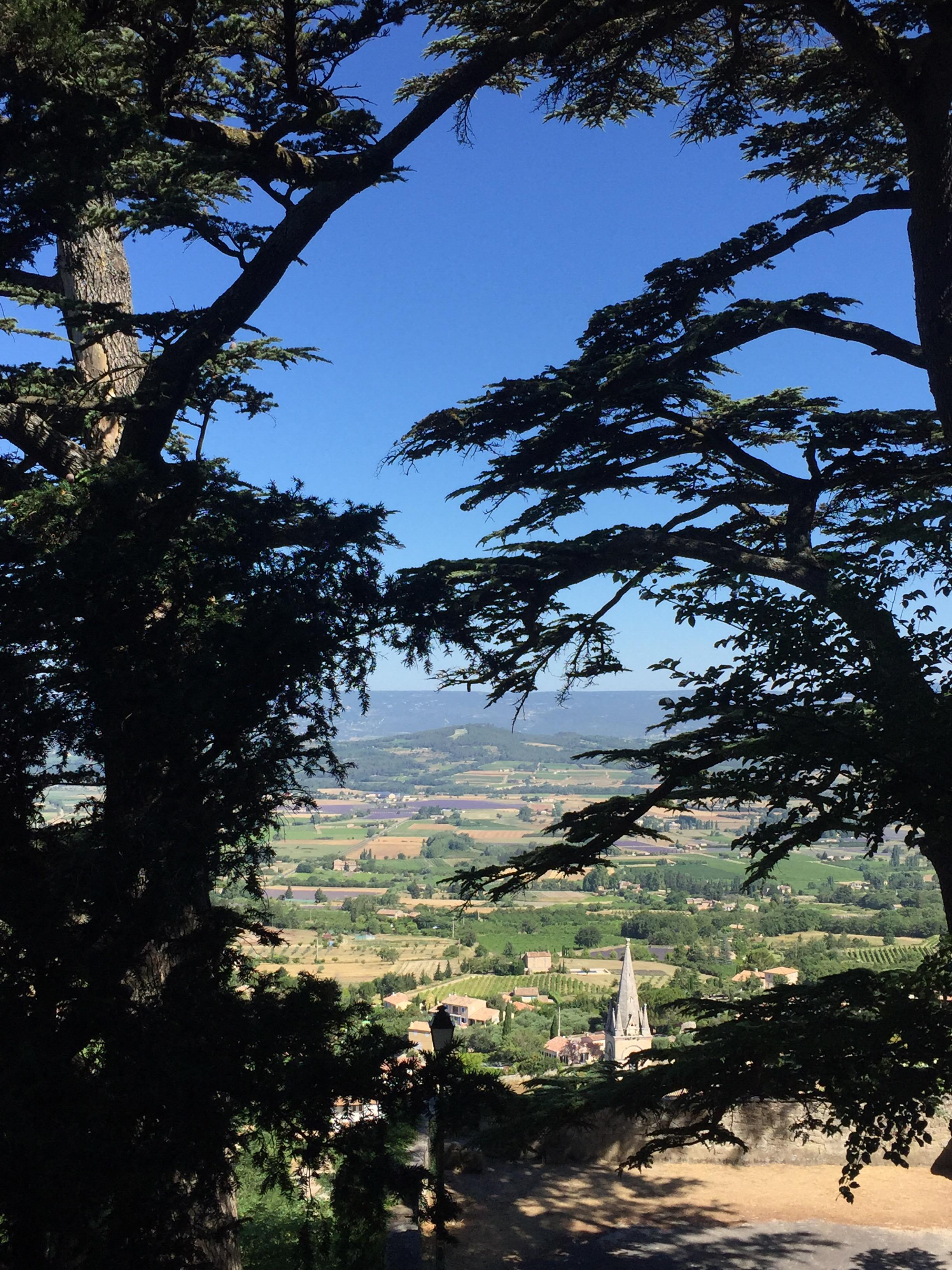 img_2246 Vacanze in Provenza, Camargue e Costa Azzurra