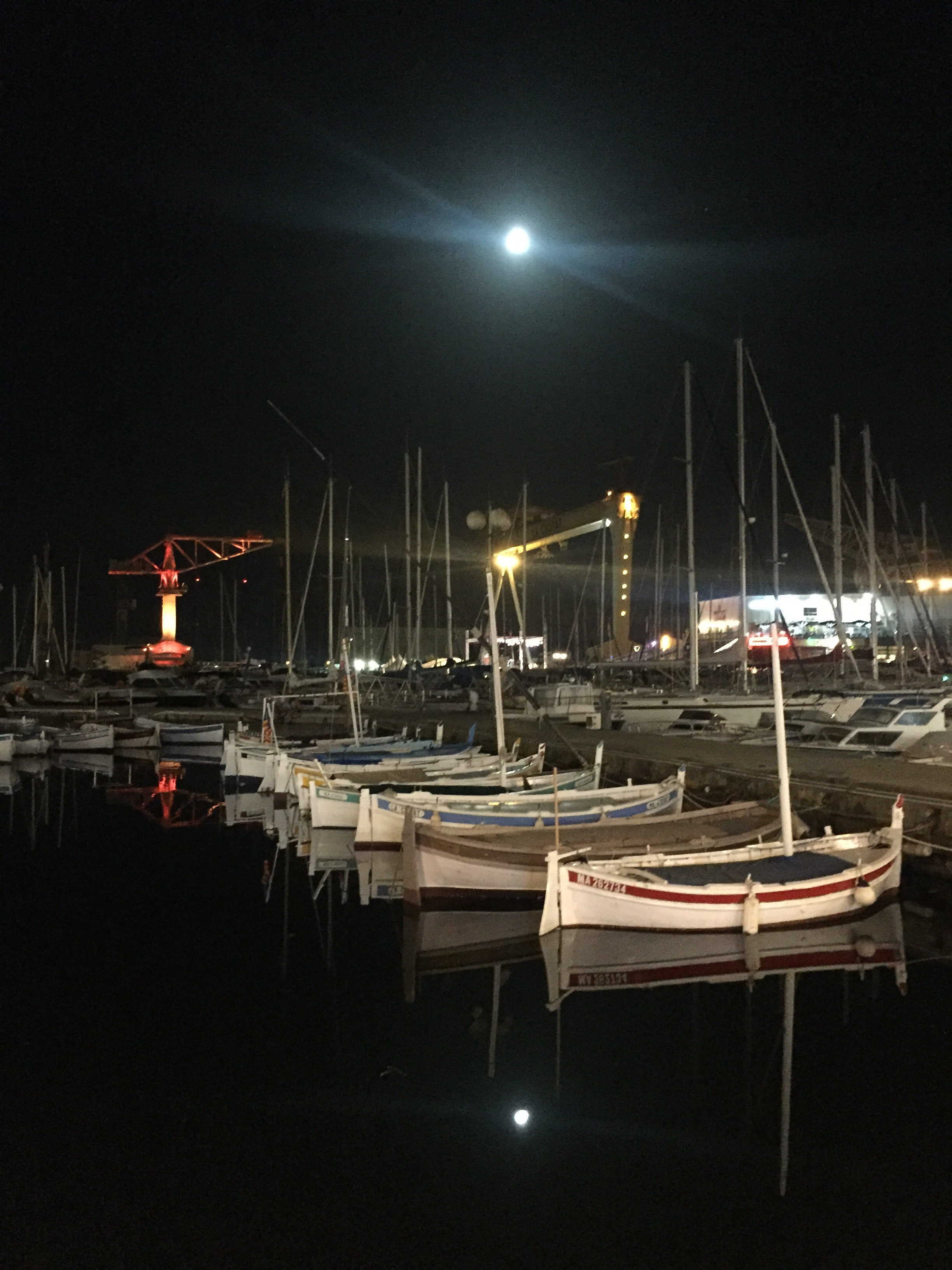 img_2381 Vacanze in Provenza, Camargue e Costa Azzurra