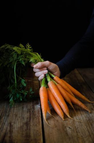 vellutara_carote_canapa My food photography